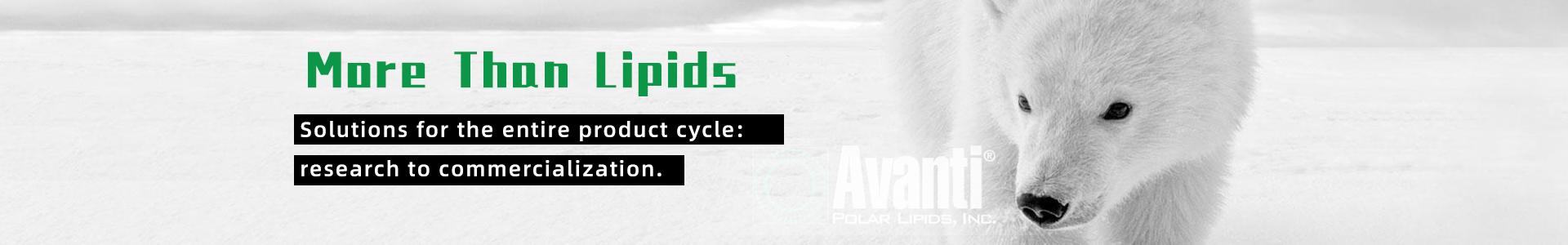 Avanti Polar