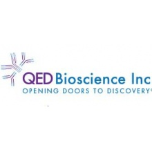 QED Bioscience/Alpha-1-antichymotrypsin/13804/1 Ea