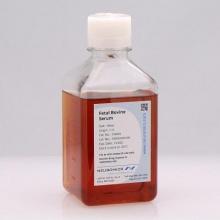 Neuromics/Insulin-Pig/PR27096-250/250mg