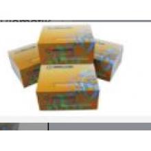 Biomatik/Alpha-Tocopherol (TCPa) CLIA Kit/EKU08650/10x96T