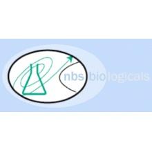 """Nbsbio/Green-2-Go q<b style=""""color:#cc0000;"""">pcr</b> Mastermix-ROX (500X20ul Rxn)/Q<b style=""""color:#cc0000;"""">pcr</b>001-R.SIZE.4X1.25mL/1 Ea"""