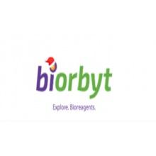 Biorbyt/Mibefradil-dihydrochloride/250 mg/orb181288