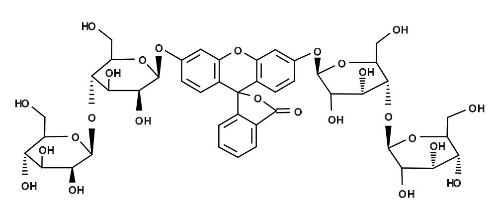 AAT Bioquest/FCB [Fluorescein di-beta-D-cellobioside]/14025/1 mg