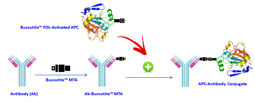 AAT Bioquest/Buccutite™ Rapid APC-Cy5.5 Tandem Antibody Labeling Kit *Microscale Optimized for Labeling 100 ug Antibod