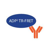 BellBrook Labs/3011-1K Transcreener® ADP2 TR-FRET Red Assay/1,000 Assay, 384 Well/7-1