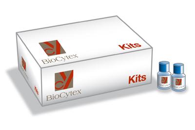 Biocytex/Fiche Megamix-Plus SSC/25 ml/7803