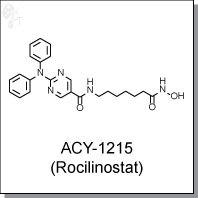Cellagentech/ACY-1215 (Rocilinostat) | HDAC6/8 inhibitor/C2121-2s/2 mg (10 mM solution in DMSO)