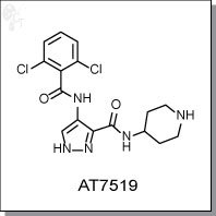 Cellagentech/AT7519 | CDK inhibitor/C2875-5/5 mg (powder)