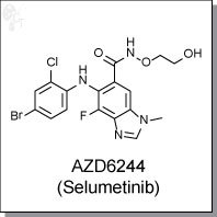 Cellagentech/AZD6244 (Selumetinib) | MEK1 inhibitor/C2624-10/10 mg (powder)