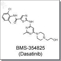 Cellagentech/BMS-354825 (Dasatinib) | Abl/Src inhibitor/C2354-10/10 mg (powder)