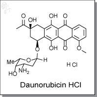 Cellagentech/Daunorubicin hydrochloride | DNA intercating agent/C3286-5/5 mg (powder)