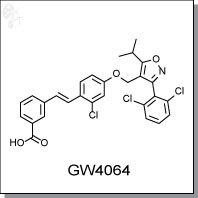 Cellagentech/GW4064 | non-steroidal FXR agonist/C4940-5/5 mg (powder)