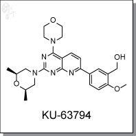 Cellagentech/KU-63794 | mTOR inhibitor/C5863-5/5 mg (powder)