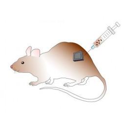 OZ Biosciences/In vivo ViroMag/250 µL/IV-VM30250