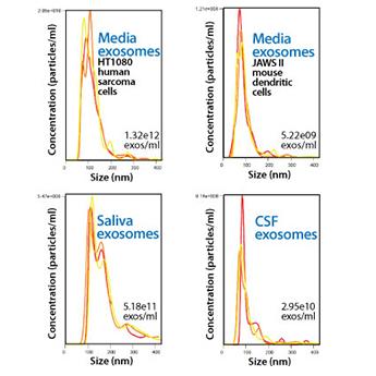 SBI/ExoQuick-CG cGMP-grade Exosome Isolation reagent/EXOCG50A-1/50 mL