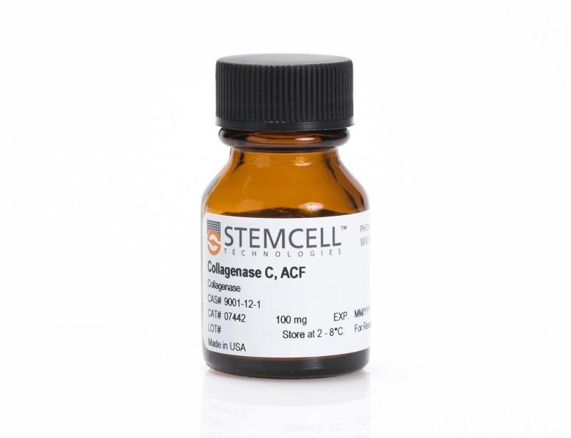 Stemcell/Collagenase C, ACF/1 g/07443
