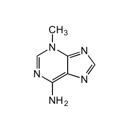 Adipogen/3-Methyladenine/CDX-M0203-M025/25 mg