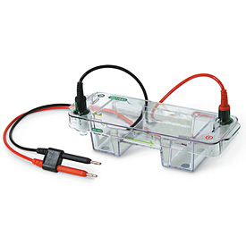 Bio-Rad/Mini-Sub® Cell GT Horizontal Electrophoresis System, 7 x 10 cm tray, with mini-gel caster