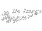 biomax/HuCAT011 Human Brain Cancer (5 SLIDES/PACK)/1/HuCAT011