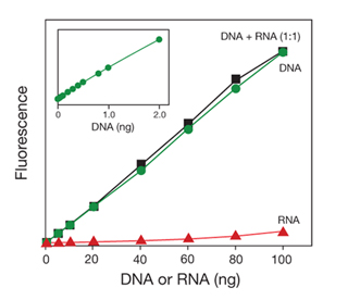 Graph showing increase in fluorescence with increase in DNA concentration