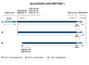 Enzolifesciences/GLP-1 (7-36, amide) monoclonal antibody (4F3)/BPD-HYB-147-12-02/200µg