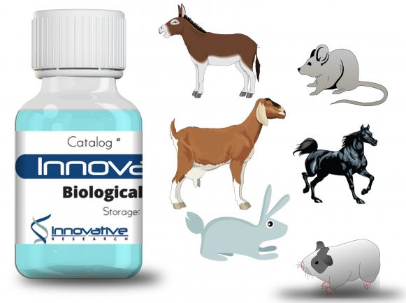 Innovative Research/Rabbit anti-plasmodium aldolase HRP Affinity Purified/IRAAP1411/0.5mg