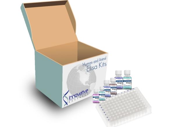 Innovative Research/Human sL-Selectin ELISA Kit/IRKTAH5232/1 Ea