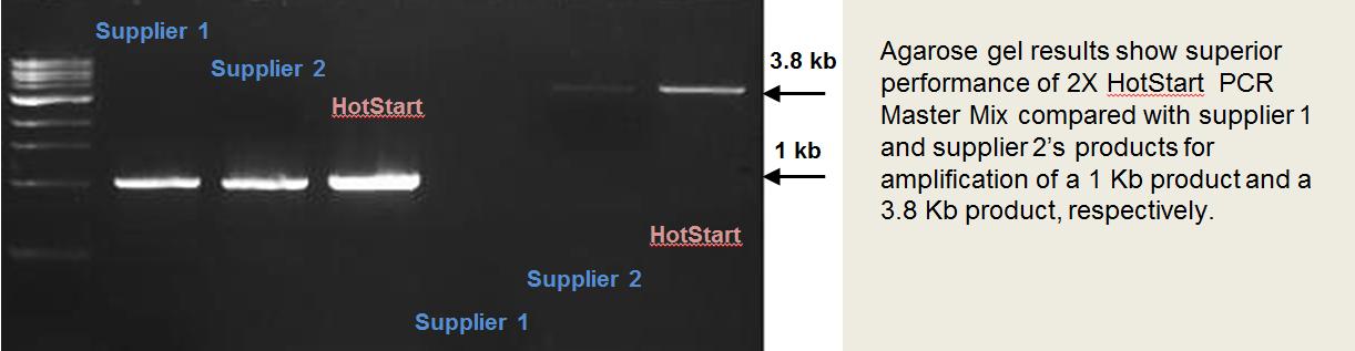 2x_HotStart_PCR_Master_Mix_comparison.pn