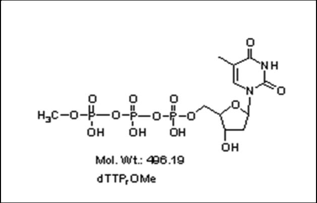 Mychem/γ-methyl-2\'-Deoxythymidine-5\'-Triphosphate/P-1005/1 µmole