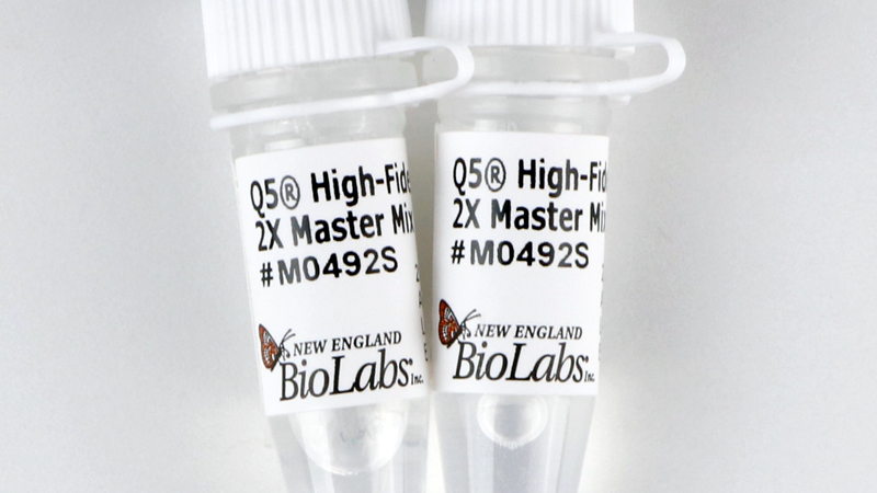 NEB/Q5® High-Fidelity 2X Master Mix/M0492S/100 reactions (50 μl vol)