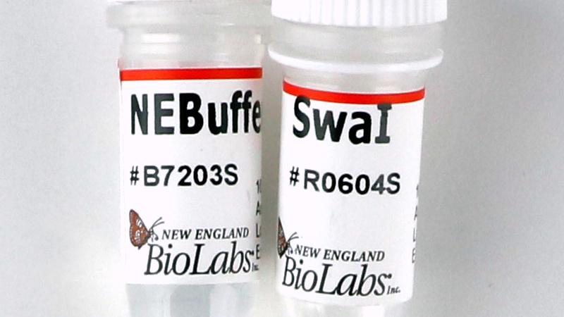 NEB/SwaI/R0604S/10,000 units