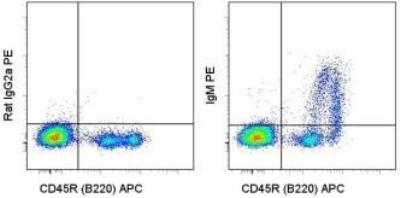 Novus/Rat anti-Mouse IgM Secondary Antibody (eB121-15F9) (NBP1-43282)/NBP1-43282-0.5mg/0.5 mg