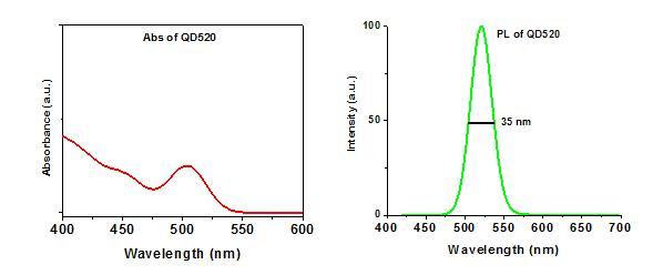 OceanNanoTech/CdSe/ZnS Organic Quantum Dots in Toluene/QSR-520-0010-1 mL