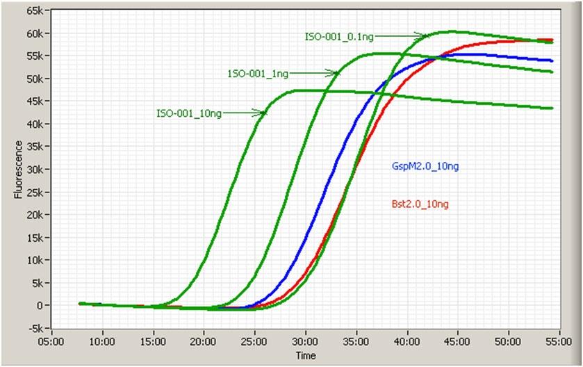 Pro-lab/8,000u GspSSD DNA polymerase @ 100u/ul/GSPSSD-002HC/1 Ea
