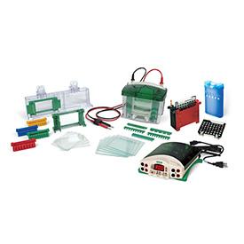 Bio-Rad伯乐Mini-PROTEAN® Tetra Cell and PowerPac™ Basic Power Supply