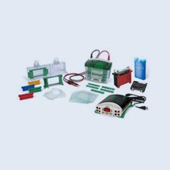 美国Bio-Rad伯乐Mini-PROTEAN® Tetra电泳槽1658033现货