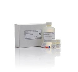 Invitrogen Q32852 Qubit™ RNA HS Assay Kit现货促销